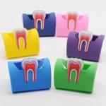 Подставка под визитки для стоматолога (Цвет уточнять)